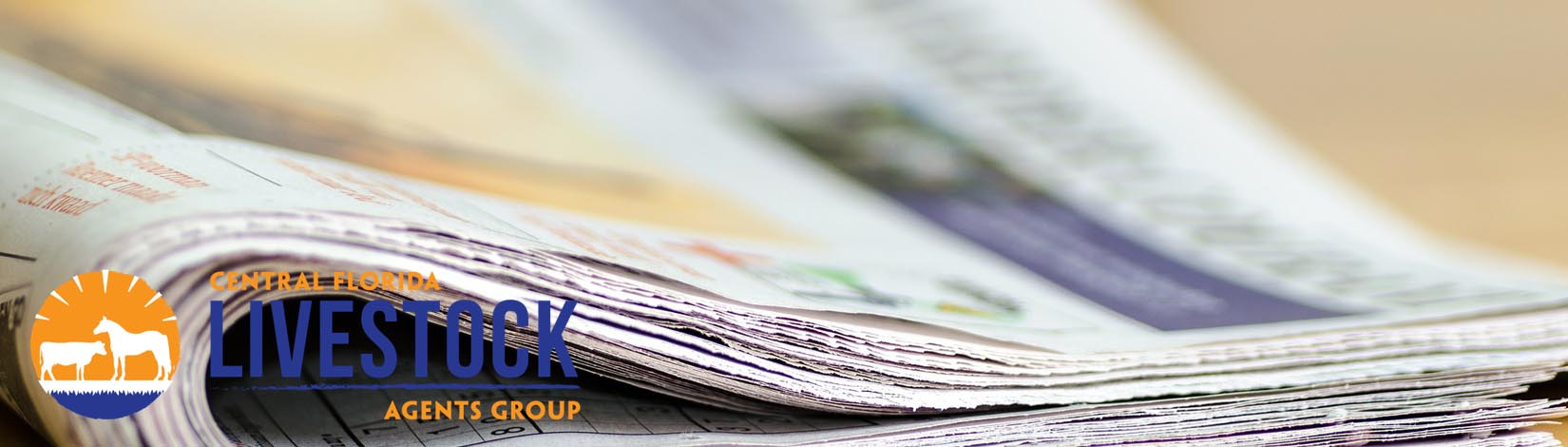 Newspaper Header 32
