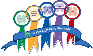 Florida 4-H Recognition Model