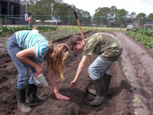 Students learn how to plant and cultivate a garden.  Photo credit Melanie Taylor, UF IFAS Gulf County Extension.