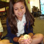 4-H Projects are about developing blue ribbon youth rather than blue ribbon projects.