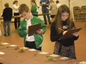 Youth competing at the North Florida Fair Horticulture Judging Contest.  Photo credit: UF IFAS Leon County 4-H