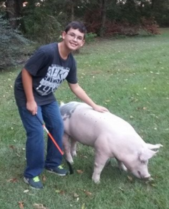 """This is Peyton's first year in the swine project. He is a Jackson County 4-Her. """"I practice with my pig everyday!"""""""