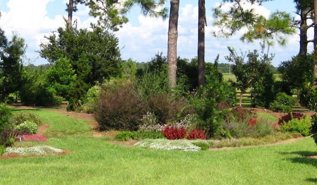 The Discovery Garden, showcasing new plants, in Gardens of the Big Bend at UF/IFAS North Florida Research and Education Center, Quincy.