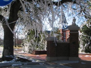 Under the Live Oaks that once stood on Toomers Corner