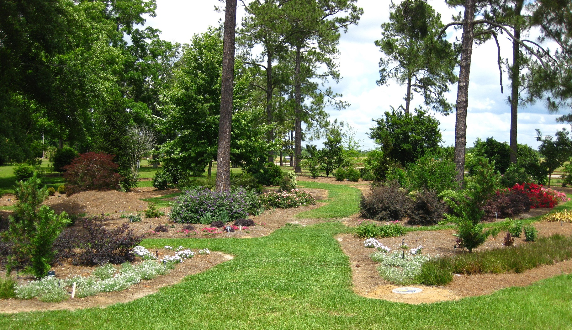View of the Discovery Garden in Gardens of the Big Bend.