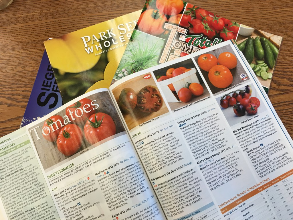 Seed Catalogs.