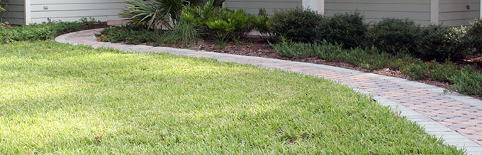 Image courtesy UF / IFAS Florida Friendly Landscaping
