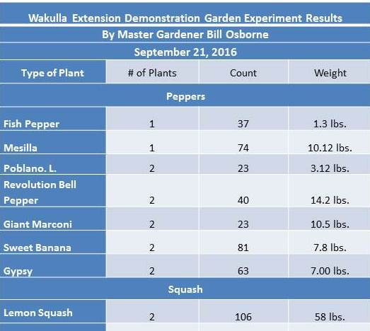 veg-gardening-econ-chart