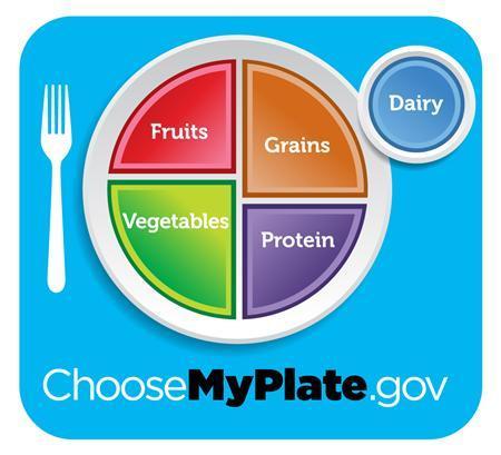 healthy-food-plate-model-7211