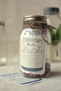 terrarium-kit