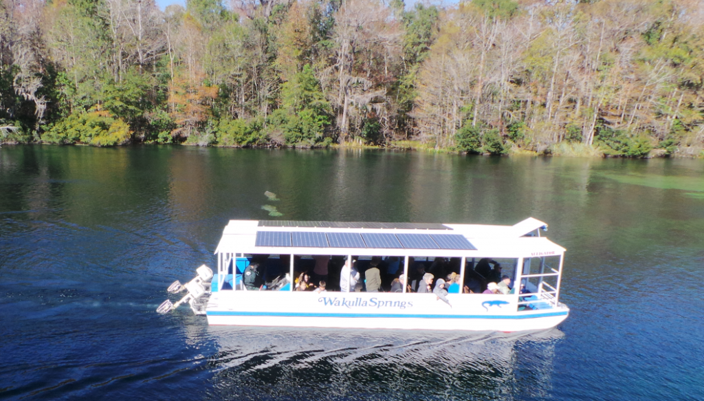 Daily river cruises on the Wakulla River are a great way to see Manatees and other unique wildlife.