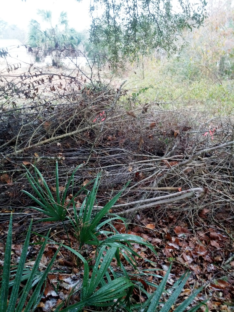 brush pile cover