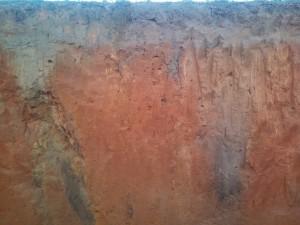 Soil Profile in Gadsden County.  Photo by Jennifer Bearden