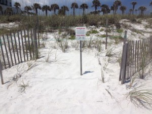 Sign altering and educating folks that this is a sea turtle nest.  Photo: Rick O'Connor