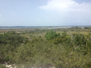 The expanse of marshes that make up Big Sabine on Santa Rosa Island.