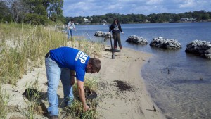 FDEP planting a living shoreline on Bayou Texar in Pensacola. Photo: FDEP