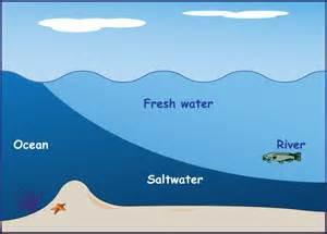 A salt wedge. Graphic: NOAA
