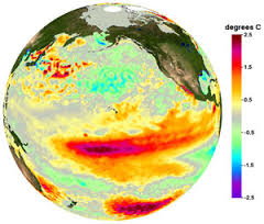 Warm water in the eastern Pacific indicates an El Nino season. Graphic: NOAA