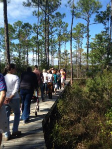 "Master Naturalist students walk ""The Way"" boardwalk in Perdido Key. Photo credit: Carrie Stevenson"