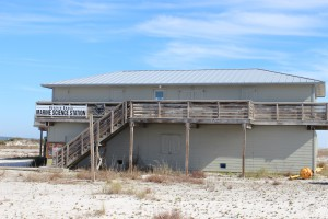 The Navarre Beach Marine Science Station provides education for young and old.