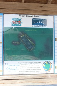 Santa Rosa County also provides a couple of nearshore snorkel reefs for the public. You can find them on both the Gulf and Sound sides.