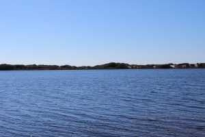 "This dune lake at Topsail State Park is one of many ""stretched"" across South Walton County."