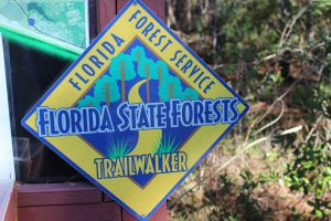 "The Florida State Trailwalkers Program is a neat way to encourage locals to visit their ""natural landscape"". You must hike 10 of the selected trails (on their website provided in this article). There is a log you can download and when you have logged your 10 hikes mail it in. You will receive a free patch indicating you are a ""Florida Trailwalker""! This is a great way to explore your ""natural Florida""."