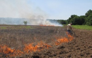 Burning fields and pastures has many benefits.