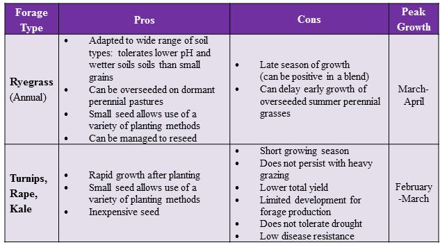 Ryegrass & Brassica