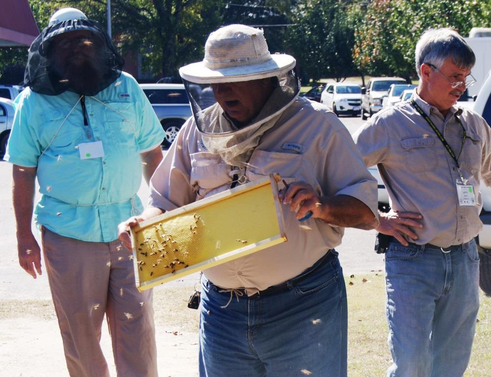 Bee inspector explains to participants how to split bee hives - Image Credit Matthew Orwat UF IFAS