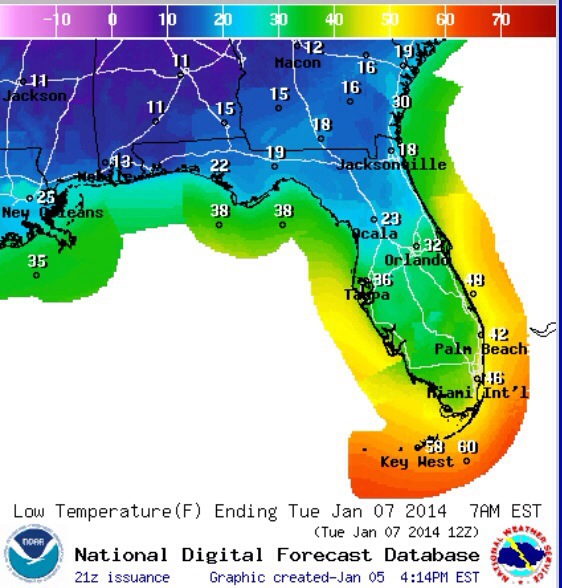 Low temperature forecast for early morning on Tuesday, January 7.
