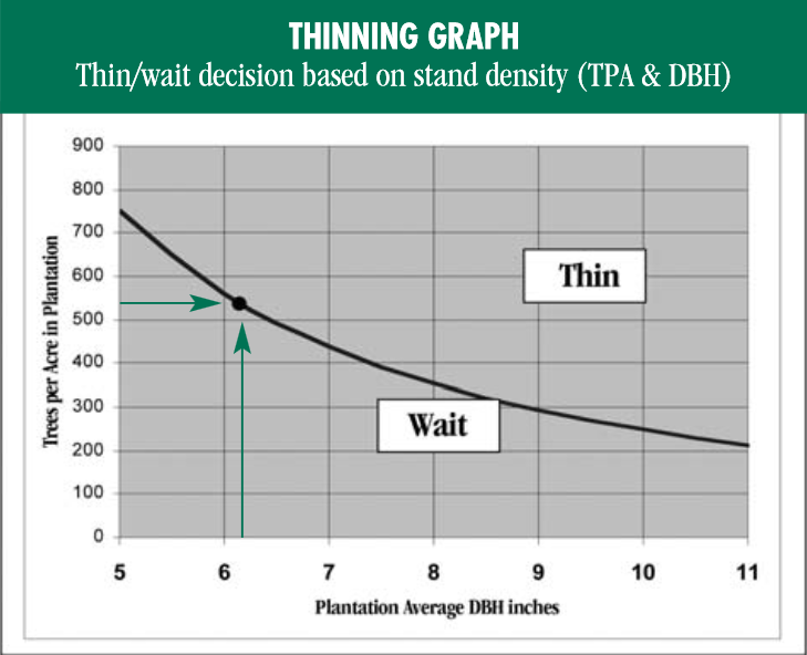 Thin or wait based on stand density.