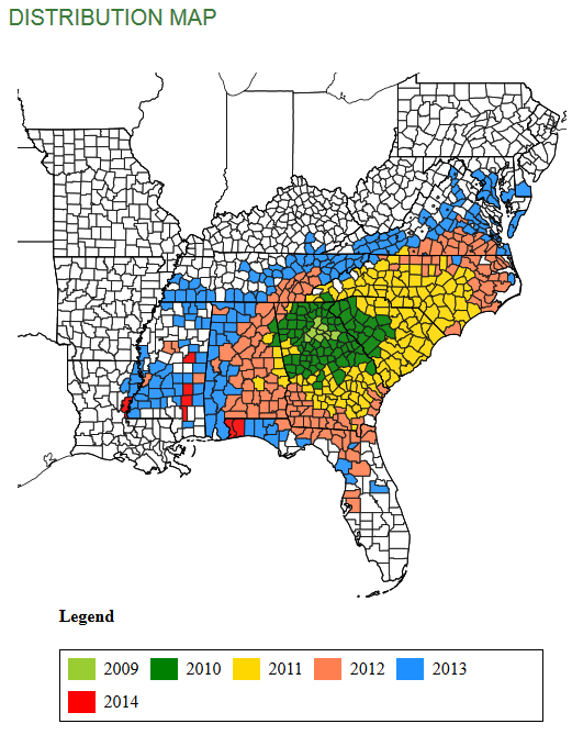 14 Kudzu bug map
