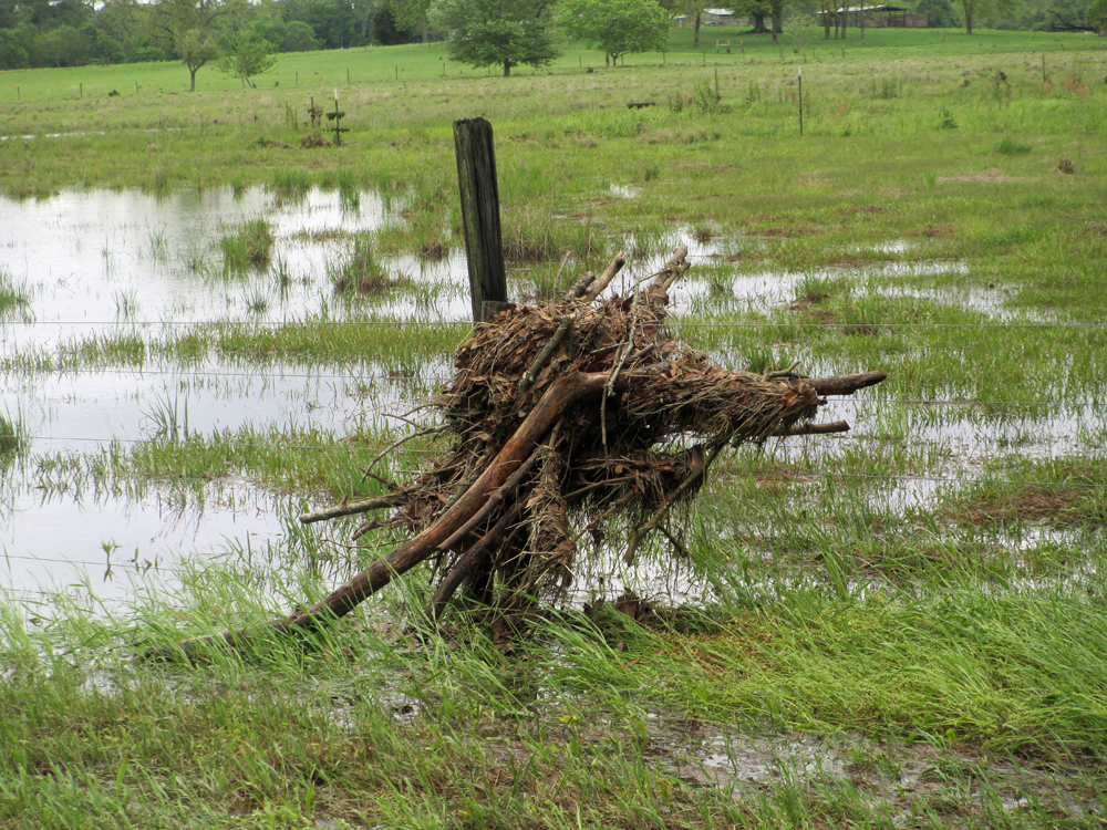 Debris caught in a fence of a Jackson County ranch during a flash flood in April.