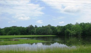 Holmes County pasture standing in water.