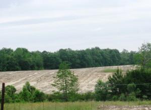 Sheet erosion in Holmes County field.  Courtesy of Shep Eubanks