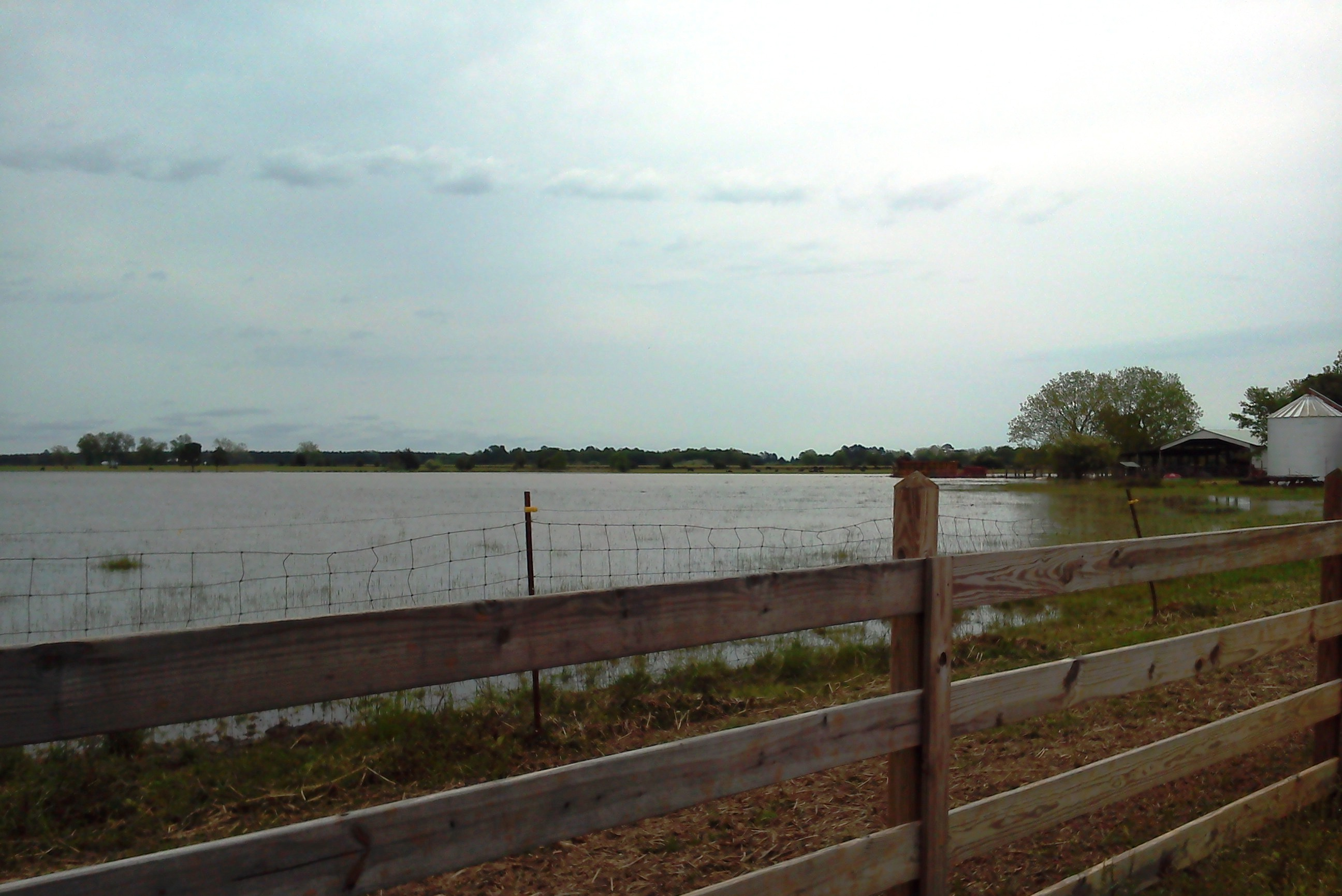 Pasture with several acres of standing water.