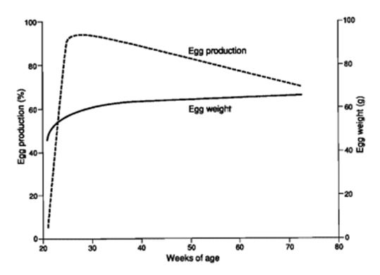 Figure 1. Production curve of an egg laying flock. http://edis.ifas.ufl.edu/ps029