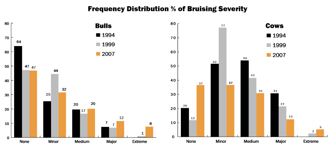 Source Executive Summary of the 2007 National Market Cow and Bull Beef Quality Audit.