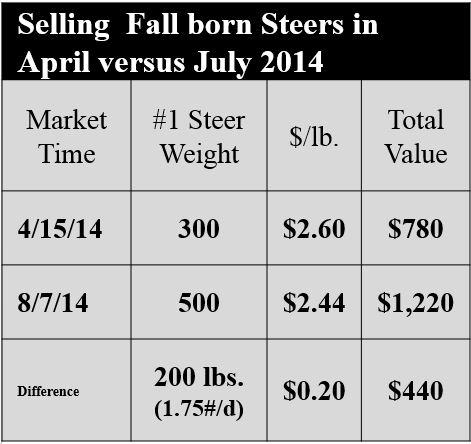 Based on USDA AL Weekly Market Report MG LS145