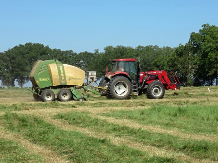 Bill Conrad made Baleage in a Bermudagrass field at Bigham Farms.