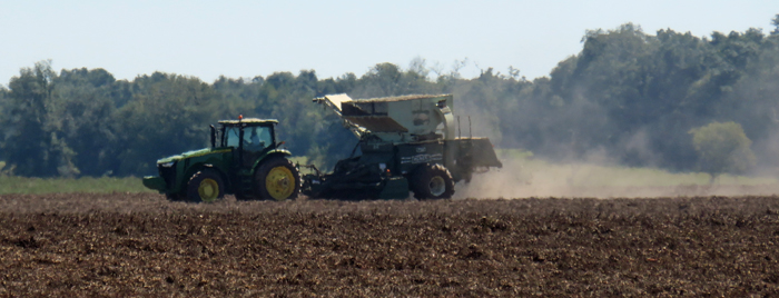 Peanuts are being picked once again, after sunshine returned on Wednesday.