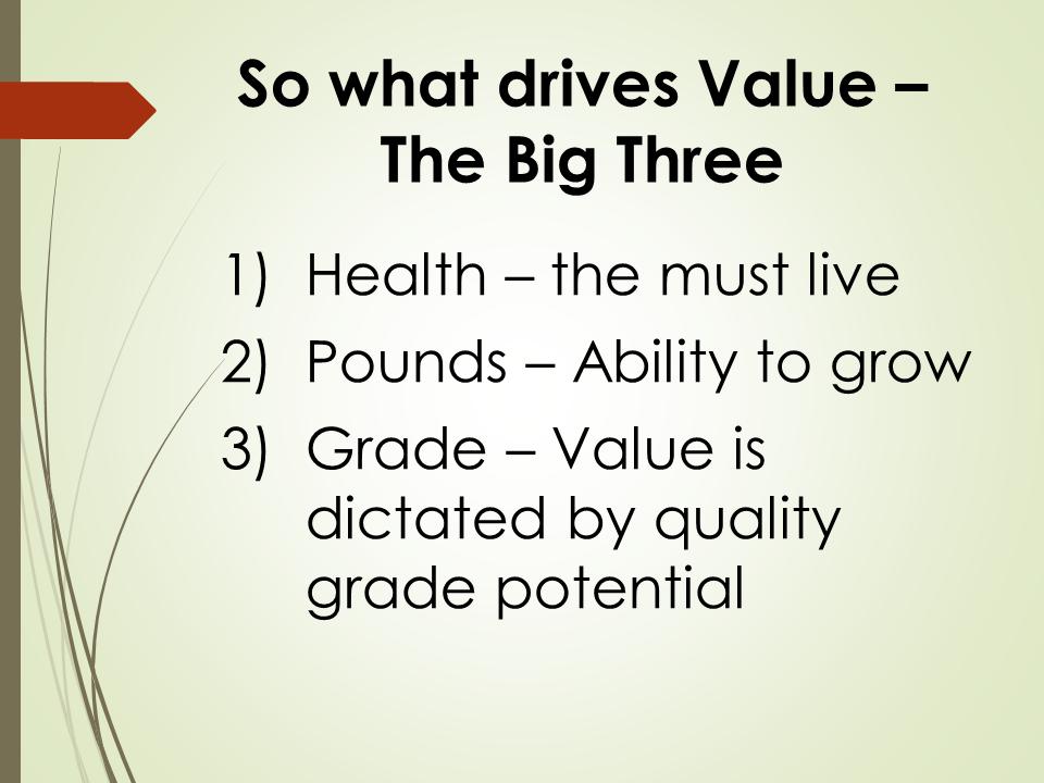 Corah 3 main factors that determine calf value
