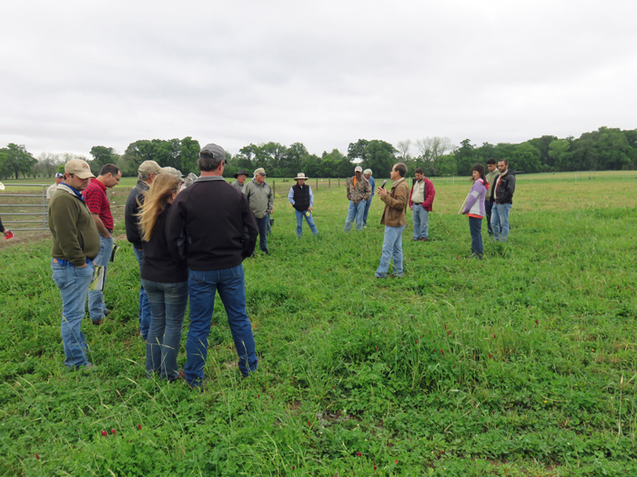 Jose Dubeux shared about a multi-year project comparing the use of legumes to reduce nitrogen fertilization requirements for perennial pastures. Photo credit: Doug Mayo