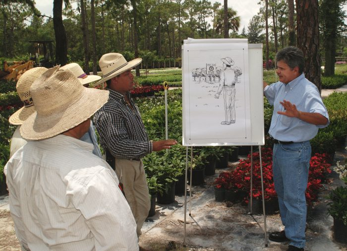 Cesar Asuaje,right, travels to citrus groves, sugarcane fields, tomato farms and other agriculture enterprises throughout South Florida, teaching a one-day, on-the-job safety course to Spanish-speaking migrant workers.