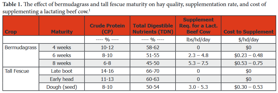 Assumptions: 1,200 lb beef cow, average to above-average milking ability, first three months postpartum, 6.0 lbs of TDN required daily, and supplement that provides 85% TDN and costs $200/ton ($0.10/lb). Source: